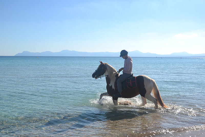 excursión caballos playa