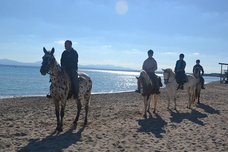excursiones playa con caballos