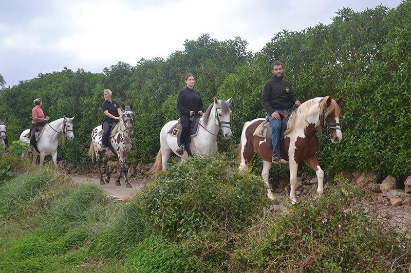 excursion a caballo pueblo alcudia