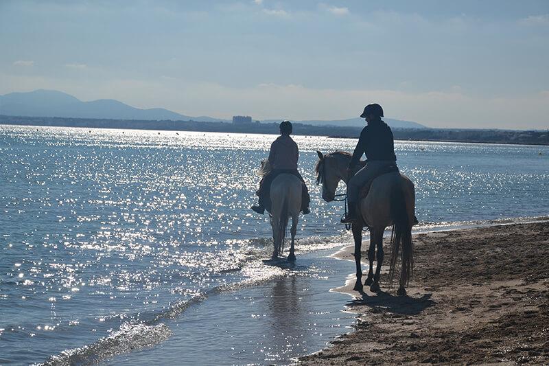 excursionj a caballo por la playa